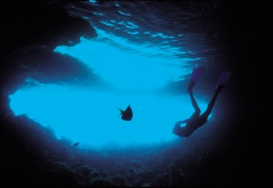 Dive06-blue1